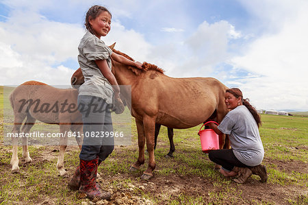 Lady milks mare (horse), daughter holds foal, Summer nomad camp, Khujirt, Uvurkhangai (Ovorkhangai), Central Mongolia, Central Asia, Asia Stock Photo - Rights-Managed, Image code: 841-08239966