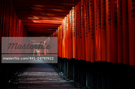 Torii tunnel, Fushimi-inari shrine, Kyoto, Japan, Asia Stock Photo - Rights-Managed, Image code: 841-08797922