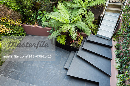 Patio garden at basement level at the Morgan house in Notting Hill, London, UK. Designed by Modular Gardens in conjunction with Crawford & Gray Architects. Stock Photo - Rights-Managed, Image code: 845-07561415