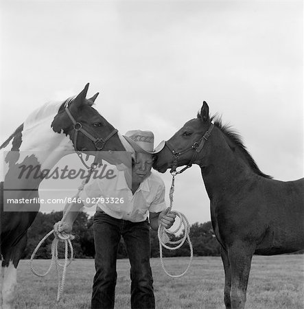 BOY COWBOY WEAR HAT HOLDING ROPES REINS HARNESS HALTER OF 2 HORSES ONE ON EITHER SIDE OF HIS FACE KISSING HIM FUNNY Stock Photo - Rights-Managed, Image code: 846-02793326