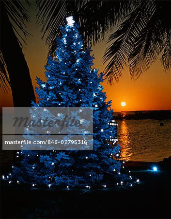1970s BLUE CHRISTMAS TREE WITH LIGHTS ON TROPICAL BEACH AT SUNSET TACKY RETRO VINTAGE