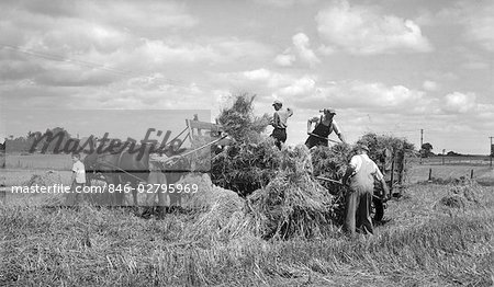 1920s 1930s MEN LOADING HAY ON TO BACK HORSE & WAGON HAYING HARVEST FARMING WORK WORKERS BOY HOLDING HORSES