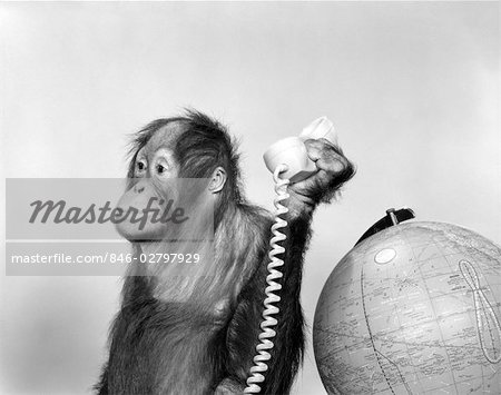 1960s ORANGUTAN SITTING NEXT TO GLOBE WITH TELEPHONE RECEIVER IN HAND Stock Photo - Rights-Managed, Image code: 846-02797929