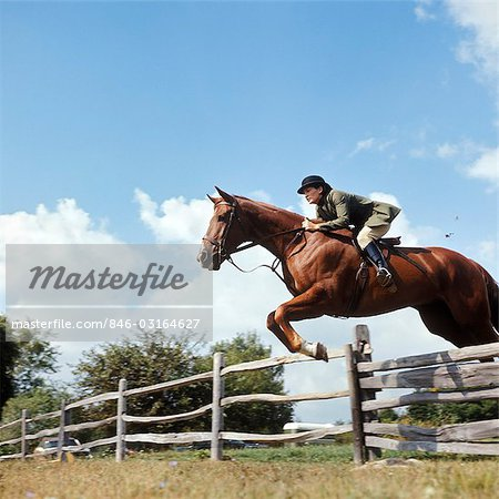 1970s WOMAN EQUESTRIAN RIDER JUMPING OVER SPLIT RAIL FENCE DURING STEEPLECHASE HORSE RACE Stock Photo - Rights-Managed, Image code: 846-03164627