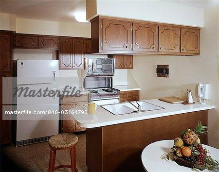 1960s Kitchen Cabinets - Sarkem.net