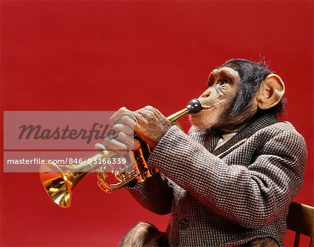 1960s MONKEY CHIMPANZEE PLAYING TRUMPET Stock Photo - Rights-Managed, Image code: 846-03166339