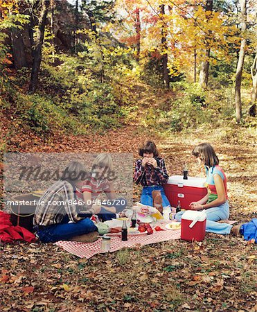 1970s - 1980s GROUP TEEN BOYS GIRLS HAVING AUTUMN PICNIC Stock Photo - Rights-Managed, Image code: 846-05646720
