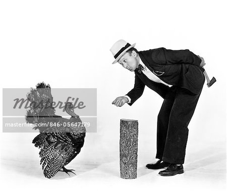 1930s - 1940s MAN CHARACTER WITH HATCHET TRYING TO CATCH A THANKSGIVING TURKEY Stock Photo - Rights-Managed, Image code: 846-05647179