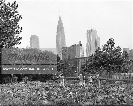 1940s - 1943 CHILDREN WORKING IN VICTORY GARDENS IN ST. GABRIEL'S PARK NEW YORK CITY CHRYSLER BUILDING VISIBLE IN BACKGROUND Stock Photo - Rights-Managed, Image code: 846-05647981