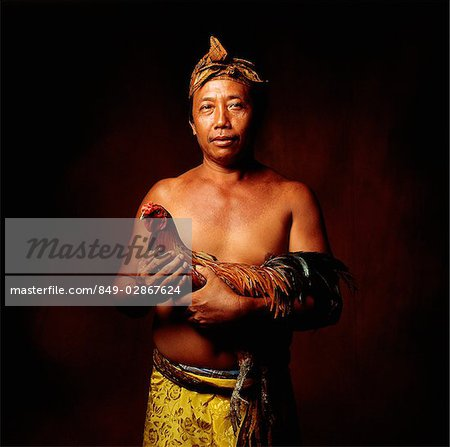 Indonesia, Bali, Ubud, Balinese man holding fighting cock. Stock Photo - Rights-Managed, Image code: 849-02867624