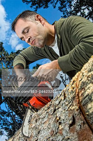 Man sawing log Stock Photo - Rights-Managed, Image code: 853-06623201