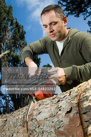 Man sawing log Stock Photo - Rights-Managed, Image code: 853-06623202