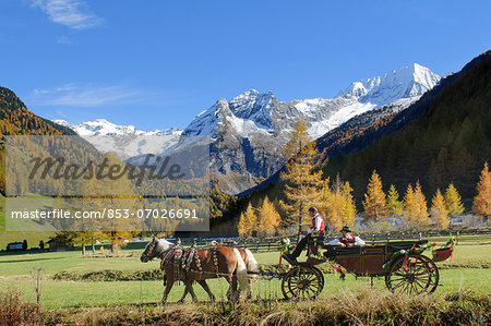 Carriage in the Rieserferner-Ahrn Nature Park, South Tyrol, Italy Stock Photo - Rights-Managed, Image code: 853-07026691