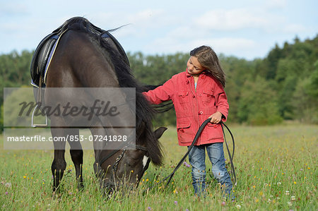 Girl standing with an Arabian Haflinger on a meadow Stock Photo - Rights-Managed, Image code: 853-07241828