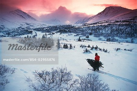 Man Chugach Mtns Snowshowing Carrying Christmas Tree AK Southcentral Winter Sunrise Stock Photo - Rights-Managed, Image code: 854-02955876
