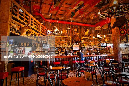 Tourist sits at the bar of the Red Dog Saloon in Juneau, Southeast Alaska, Summer Stock Photo - Rights-Managed, Image code: 854-03646300