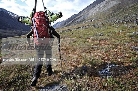 Backcountry skier hikes up the Katak Creek valley with pack and skis, Brooks Range, ANWR, Arctic Alaska, Summer Stock Photo - Rights-Managed, Image code: 854-03740029