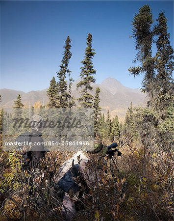 Male bow hunter and son use a spotting scope to look for moose while hunting, Eklutna Lake area, Chugach State Park, Southcentral Alaska, Autumn Stock Photo - Rights-Managed, Image code: 854-03844996