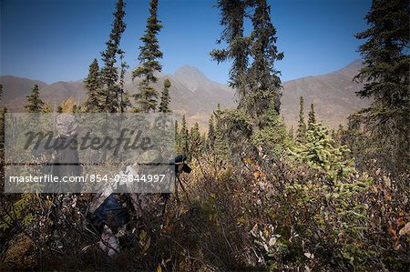 Male bow hunter and son use a spotting scope to look for moose while hunting, Eklutna Lake area, Chugach State Park, Southcentral Alaska, Autumn Stock Photo - Rights-Managed, Image code: 854-03844997