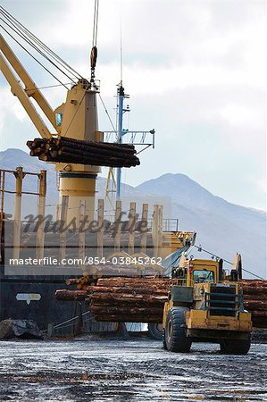 View of log ship being loaded with Sitka Spruce from Chiniak and Sequel Point at LASH dock in Women's Bay, Kodiak Island, Southwest Alaska, Autumn Stock Photo - Rights-Managed, Image code: 854-03845262