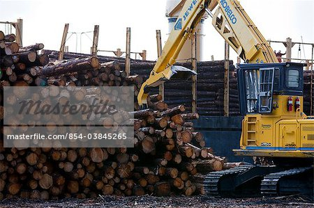 View of log ship being loaded with Sitka Spruce from Chiniak and Sequel Point at LASH dock in Women's Bay, Kodiak Island, Southwest Alaska, Autumn Stock Photo - Rights-Managed, Image code: 854-03845265