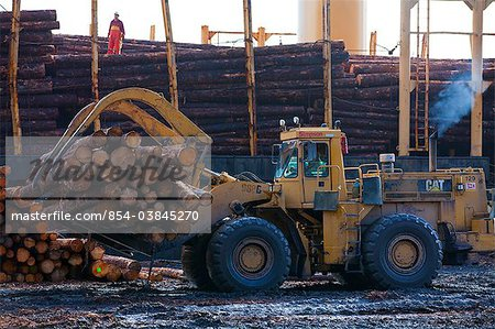 View of log ship being loaded with Sitka Spruce from Chiniak and Sequel Point at LASH dock in Women's Bay, Kodiak Island, Southwest Alaska, Autumn Stock Photo - Rights-Managed, Image code: 854-03845270