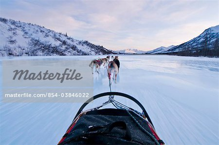 Musher's perspective while mushing down the North Fork of the Koyukuk River in Gates of the Arctic National Park & Preserve, Arctic Alaska, Winter Stock Photo - Rights-Managed, Image code: 854-03846022