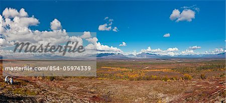 Mother and daughter picking blueberries next to the Denali Highway, Interior Alaska, Autumn Stock Photo - Rights-Managed, Image code: 854-05974339