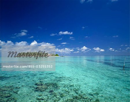 Tropical island, Maldives Stock Photo - Rights-Managed, Image code: 855-03255352
