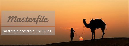 Silhouette of a man standing with a camel, Jaisalmer, Rajasthan, India Stock Photo - Rights-Managed, Image code: 857-03192631
