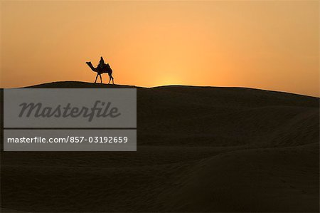 Two people riding camels, Jaisalmer, Rajasthan, India Stock Photo - Rights-Managed, Image code: 857-03192659