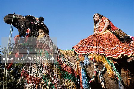 Woman riding on a camel, Chittorgarh, Rajasthan, India Stock Photo - Rights-Managed, Image code: 857-03553536