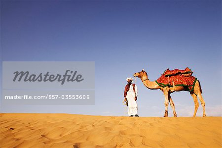 Man standing with a camel in a desert, Thar Desert, Jaisalmer, Rajasthan, India Stock Photo - Rights-Managed, Image code: 857-03553609