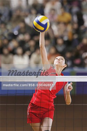 Volleyball Players in Intense Moment Stock Photo - Rights-Managed, Image code: 858-03046887
