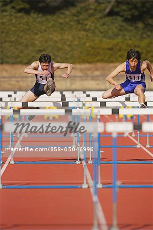 Hurdle Race Stock Photo - Rights-Managed, Image code: 858-03046996