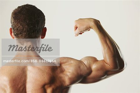 Body Builder Stock Photo - Rights-Managed, Image code: 858-06617664