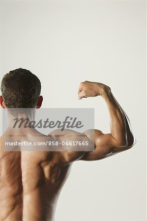 Body Builder Stock Photo - Rights-Managed, Image code: 858-06617665