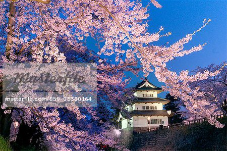 Cherry Blossoms And Hirosaki Castle, Aomori Prefecture, Japan Stock Photo - Rights-Managed, Image code: 859-06380164