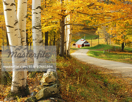 Autumn colors Stock Photo - Rights-Managed, Image code: 859-07441994