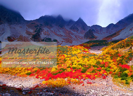 Autumn colors Stock Photo - Rights-Managed, Image code: 859-07442097