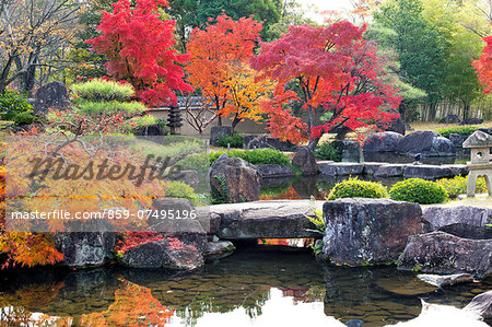 Autumn colors Stock Photo - Rights-Managed, Image code: 859-07495196