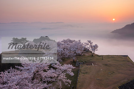 Hyogo Prefecture, Japan Stock Photo - Rights-Managed, Image code: 859-07783624