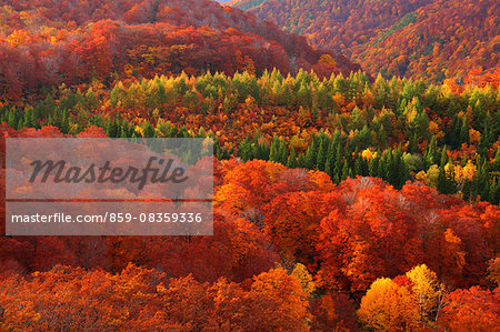 Aomori Prefecture, Japan Stock Photo - Rights-Managed, Image code: 859-08359336