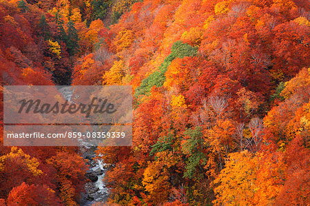 Aomori Prefecture, Japan Stock Photo - Rights-Managed, Image code: 859-08359339