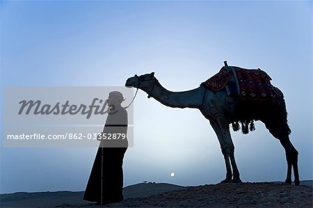 A bedouin leads his camel along the top a dune at sunset,Giza,Egypt . Stock Photo - Rights-Managed, Image code: 862-03352879