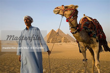 A camel driver stands in front of the pyramids at Giza,Egypt. . Stock Photo - Rights-Managed, Image code: 862-03352887
