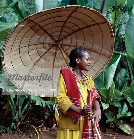 An attractive girl from the Kediyo tribe carries a large,beautifully made umbrella. Its wooden frame is covered with the dried leaves of ensete,the false banana plant (seen growing in the background). Widely cultivated in southern Ethiopia,ensete roots and stems,which are rich in carbohydrates,are either cooked and eaten as a porridge or made into bread. Stock Photo - Rights-Managed, Image code: 862-03353992