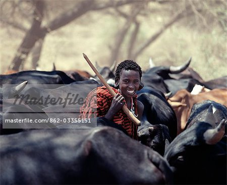 A young Maasai herdsboy drives his family's herds to grazing grounds close to the Sanjan River in Northern Tanzania. Stock Photo - Rights-Managed, Image code: 862-03355151
