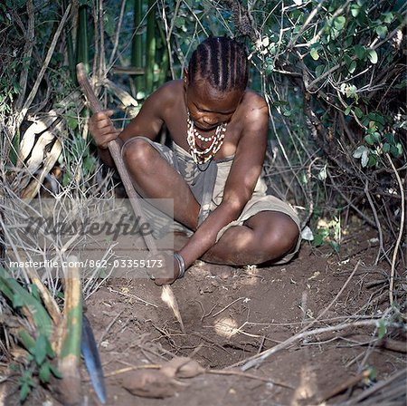 A Hadza woman digs for edible tubers with a digging stick.The Hadzabe are a thousand-strong community of hunter-gatherers who have lived in the Lake Eyasi basin for centuries. They are one of only four or five societies in the world that still earn a living primarily from wild resources. Stock Photo - Rights-Managed, Image code: 862-03355173