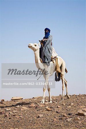 Mali,Timbuktu. A proud Tuareg rides his camel across semi-desert stoney terrain near Timbuktu. Stock Photo - Rights-Managed, Image code: 862-03364233